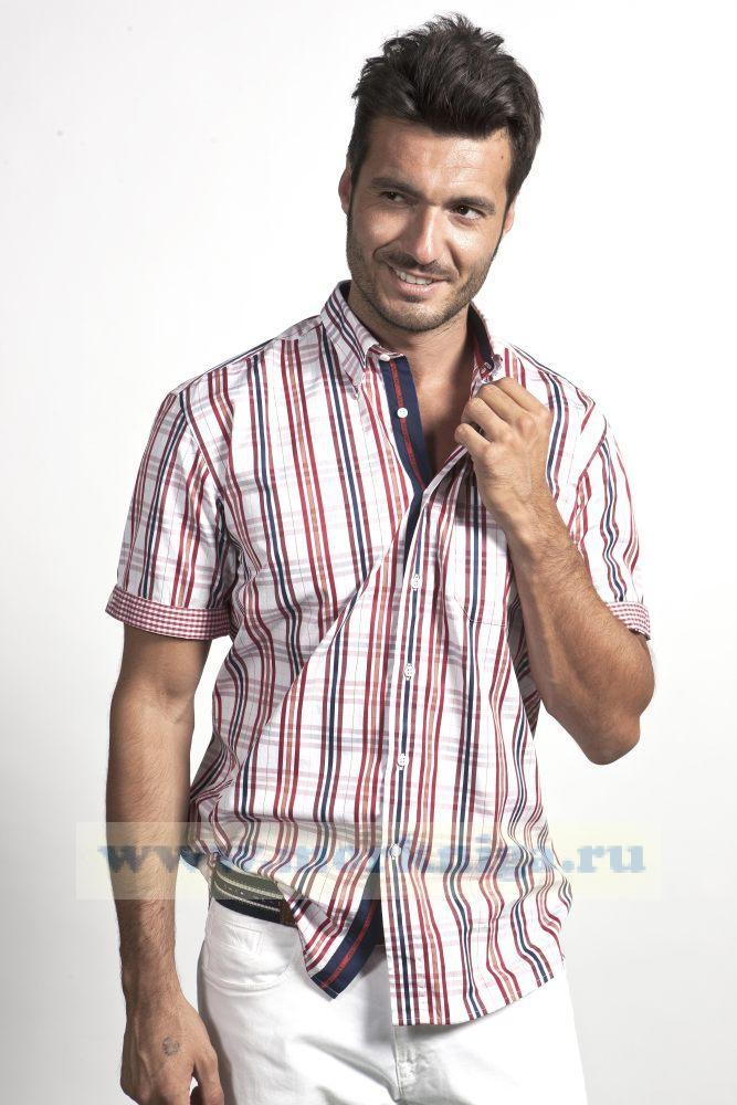 Сорочка мужская с коротким рукавом