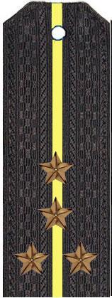 Погоны капитан-лейтенанта (капитана) вмф (черные)