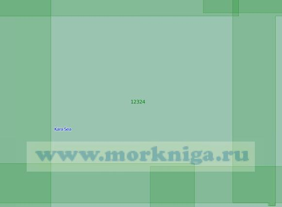 12324 Район к северо-западу от острова Пологий-Сергеева (Масштаб 1:200 000)