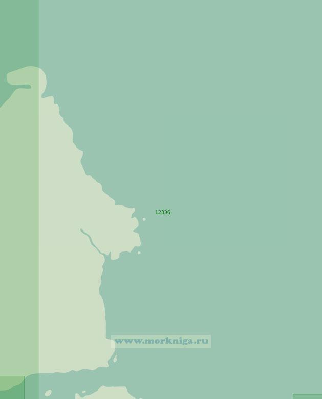 12336 От мыса Арктический до мыса Берга (Масштаб 1:200 000)