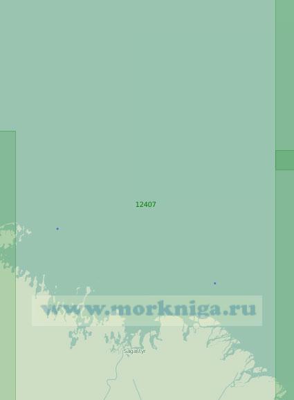 12407 Район к северу от дельты реки Лена (Масштаб 1:200 000)