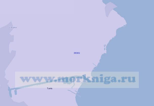 39301 Порты Тунис и Хальк-эль-Уэд (Ла-Гулет) (Масштаб 1:20 000)