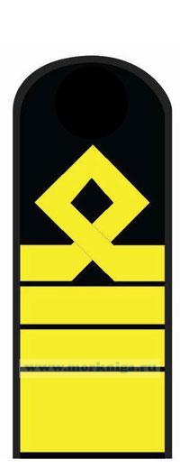 Погоны (наплечные знаки различия) морского флота. 13 должностная категория