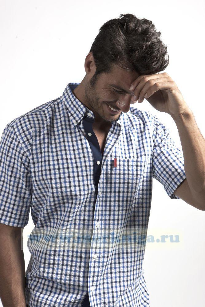 Сорочка мужская с коротким рукавом 21855 Размер 52