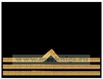 Нарукавный знак различия речного флота (нашивка, шеврон) 3 должностная категория