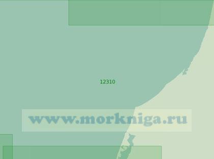 12310 От мыса Харасавэй до реки Пилёяха (Масштаб 1:200 000)