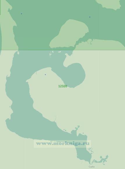 12320 Гыданская губа (Масштаб 1:200 000)