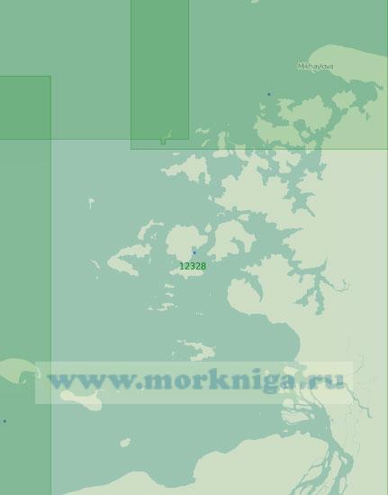 12328 Пясинский залив и шхеры Минина (Масштаб 1:200 000)