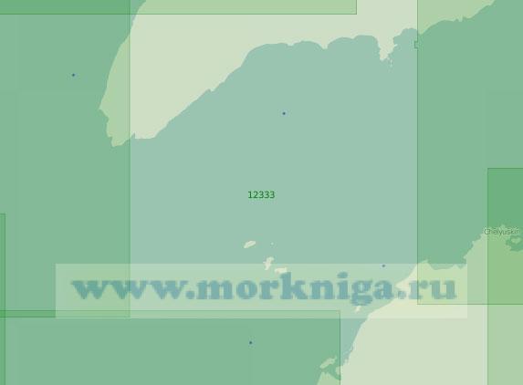 12333 Пролив Вилькицкого (Масштаб 1:200 000)
