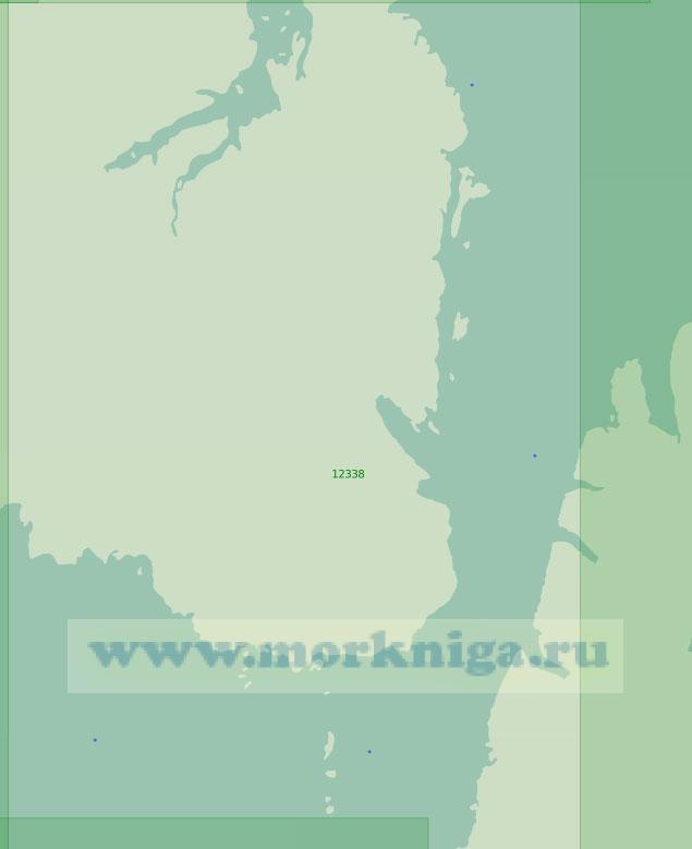 12338 Пролив Шокальского с подходами (Масштаб 1:200 000)
