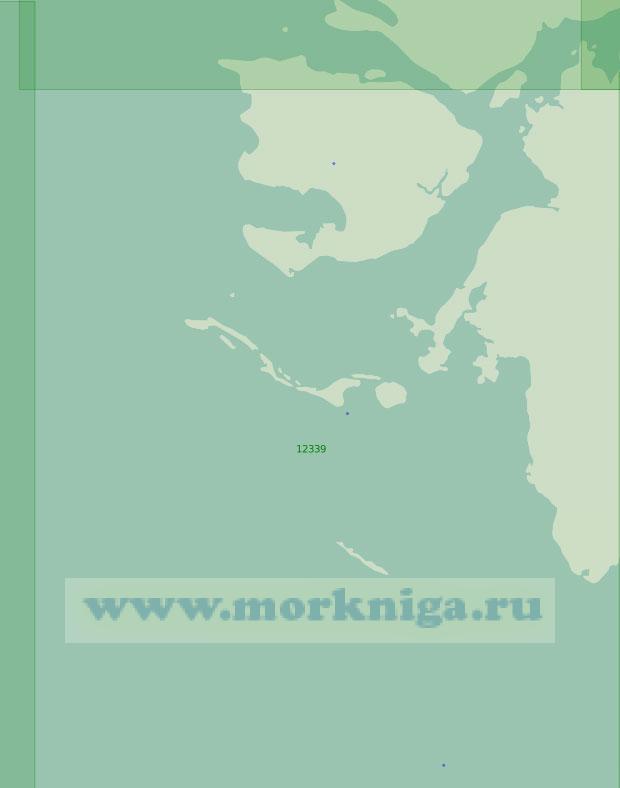 12339 От мыса Медный до острова Пионер (Масштаб 1:200 000)