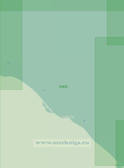 12431 От лагуны Рыпильгын до косы Двух Пилотов (Масштаб 1:200 000)