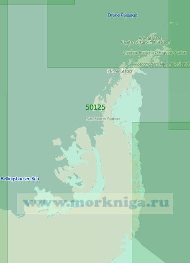 50125 Антарктический полуостров (Масштаб 1:2 000 000)