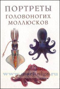 Атлас прижизненных окрасок головоногих моллюсков (портреты головоногих моллюсков).