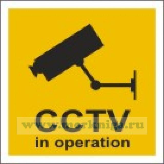 Ведется видеонаблюдение. CCTV in operation (самоклейка)