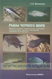 Рыбы Черного моря. Определитель морских, солоноватоводных, эвригалинных и проходных видов с цветными иллюстрациями, собранными С.В. Богородским