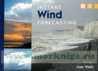 Instant Wind Forcasting