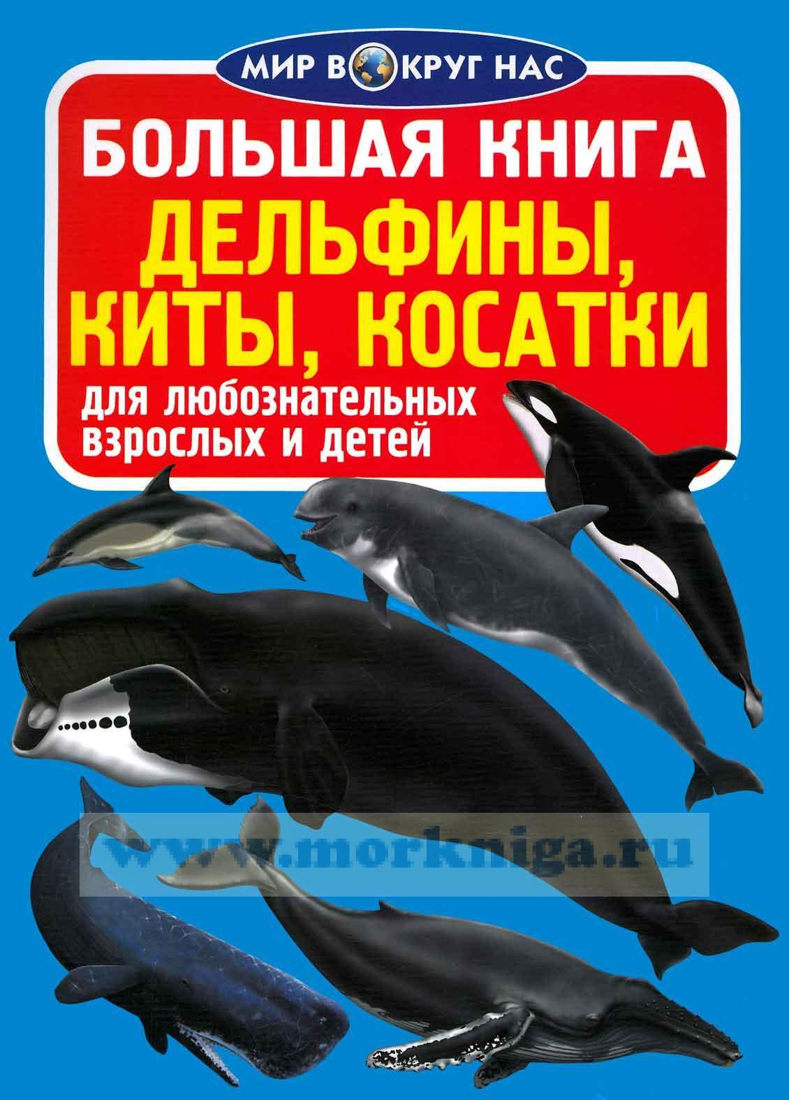 Большая книга. Дельфины, киты, касатки (для любознательных взрослых и детей)