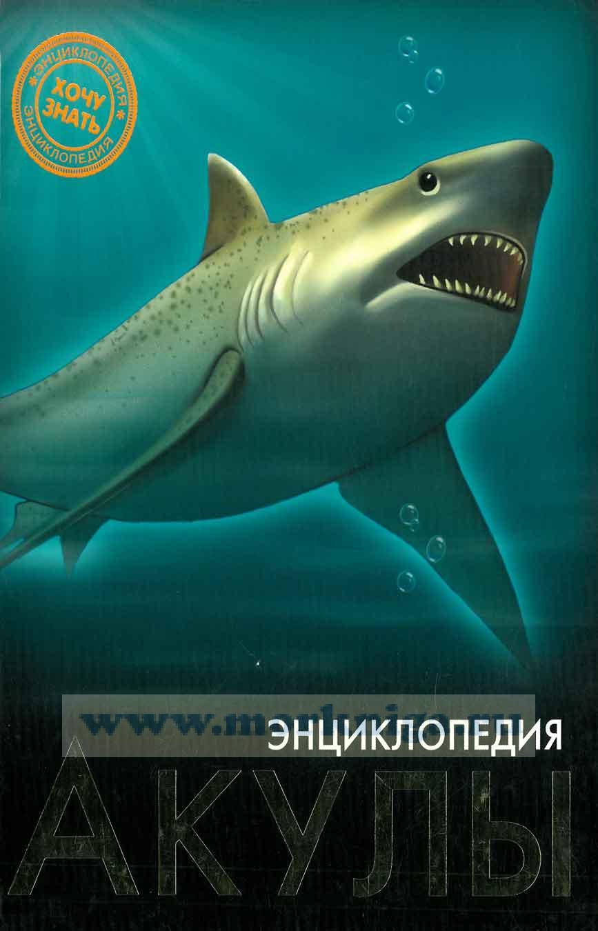 """Акулы. Серия """"Хочу знать"""""""