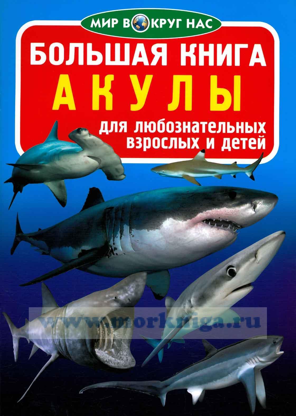 Большая книга. Акулы (для любознательных взрослых и детей)